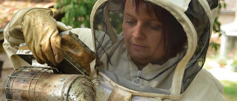 Ruchers & vergers d'Alésia, producteur de miel et jus de pomme