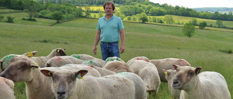 Pascal Laprée, producteur de foie gras et viande ovine