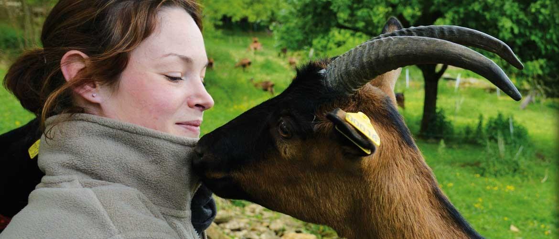 La Chèvrerie du Rochat, producteur de fromages de chèvres